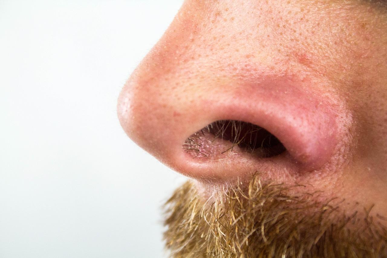 【鼻毛の切りすぎに注意】鼻水・くしゃみ・風邪。切りすぎた時の対処法も紹介!