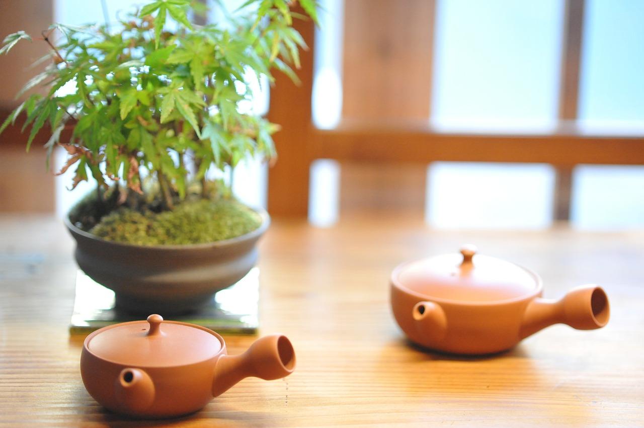 【碁石茶の効能】効果・副作用は!?味はまずい?美味しい作り方&飲み方を紹介!